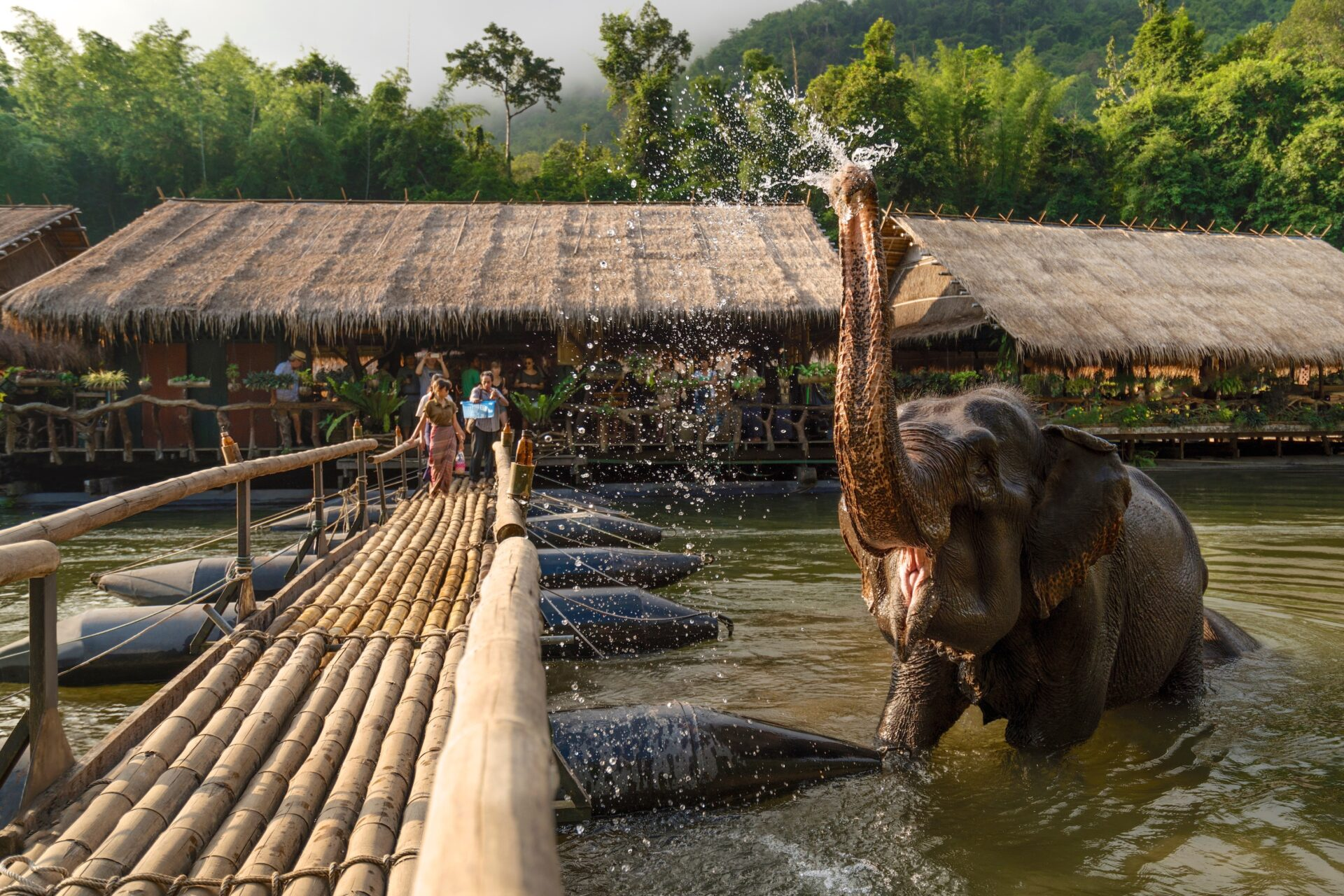 river kwai kanchanaburi elephant resort jungle rafts
