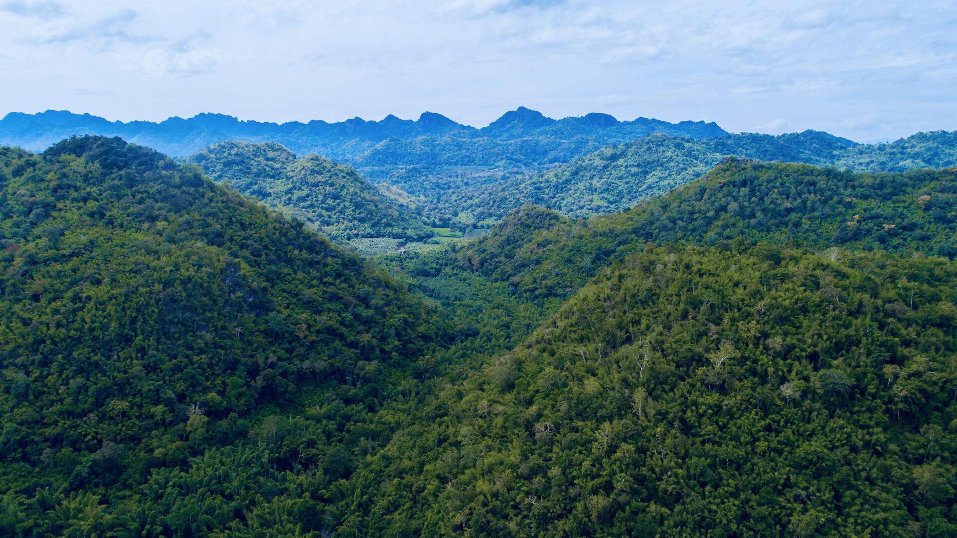 nature sustainable hotels thailand